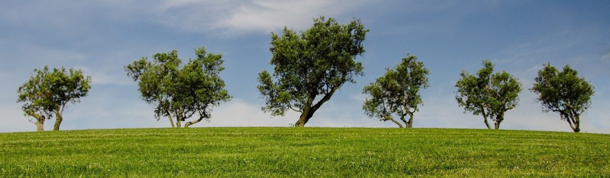 Umwelt, Klima und Tourismus